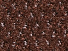 Balmora Chocolat | Karo Halı | Balsan