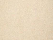 VENÜS 2 | Duvardan Duvara Halı